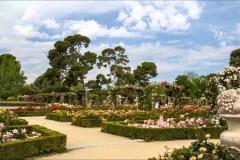Parque del Retiro. Madrid.